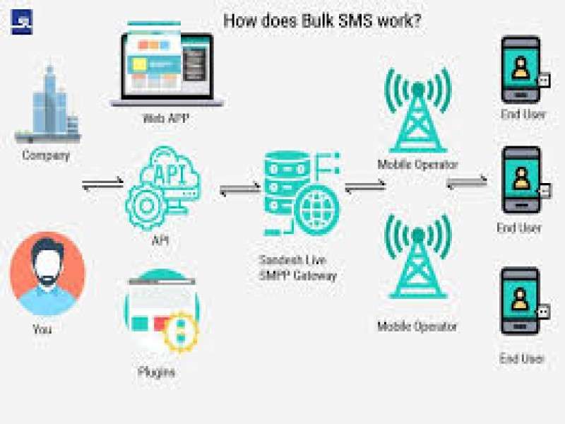How does bulk SMS work in India